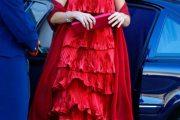 La Reina Maxima de Holanda Glamour y Belleza Real